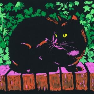 dibujo ilustración gato negro acrílico acrylic