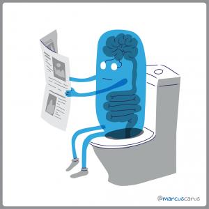 noticias leer wc efímero ephemeral newspaper periódico shit garbage basura caca baño read brain cerebro intestino tubo tubería