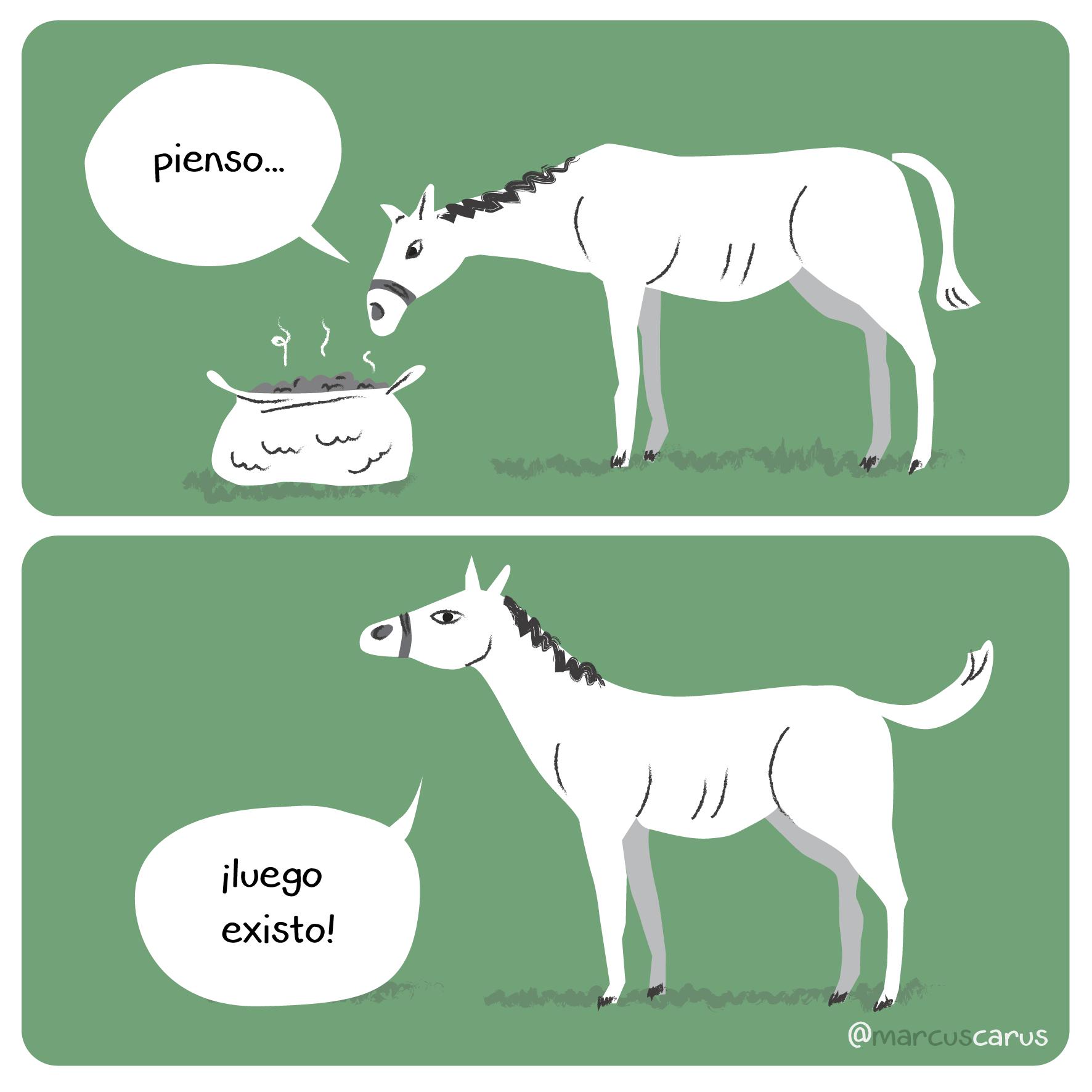 descartes caballo exisstencialismo viñeta prensa humor gráfico pienso luego existo