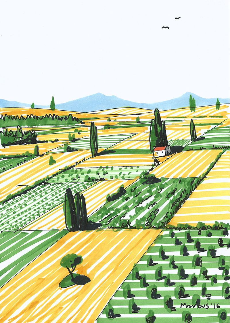 Castilla landscape drawing dibujo perspectiva Palencia Campo land